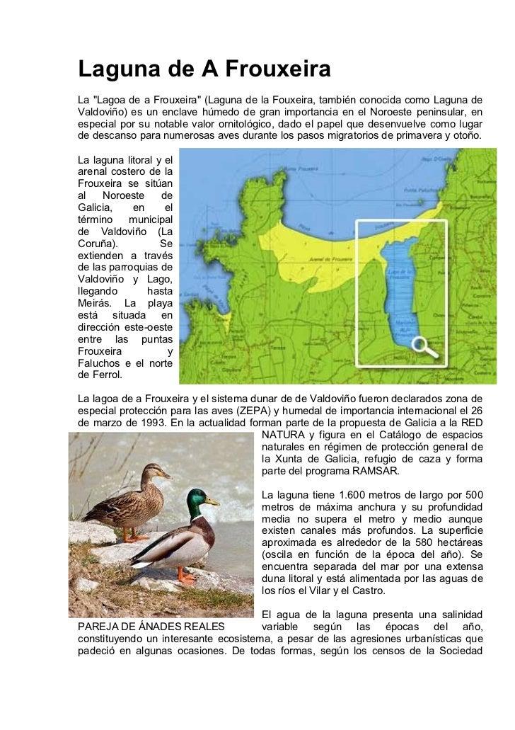 """Laguna de A FrouxeiraLa """"Lagoa de a Frouxeira"""" (Laguna de la Fouxeira, también conocida como Laguna deValdoviño) es un enc..."""