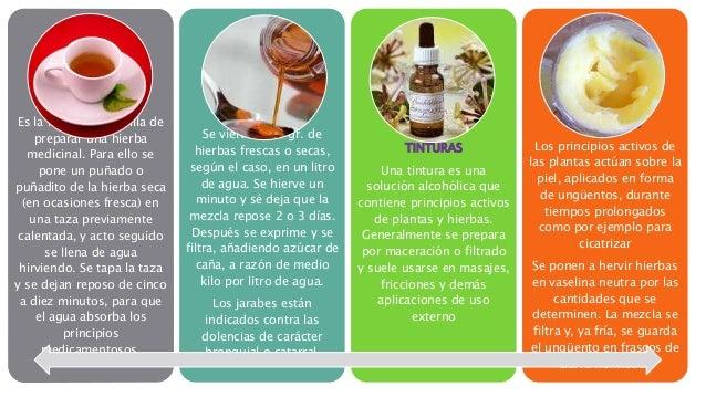 la herbolaria en mexico