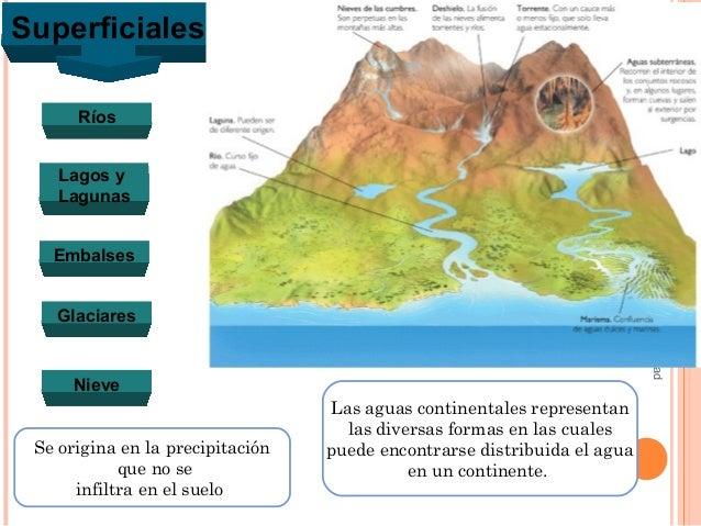 La hidrosfera 4to de secundaria for Como se cocinan los percebes