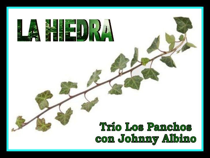 LA HIEDRA Trío Los Panchos con Johnny Albino