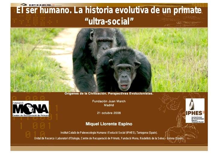 La Historia Evolutiva De Los Primates