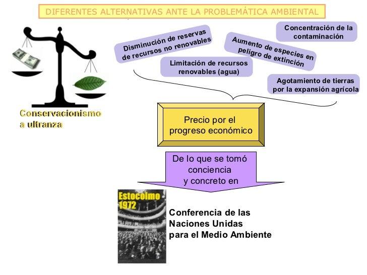 DIFERENTES ALTERNATIVAS ANTE LA PROBLEMÁTICA AMBIENTAL                                                                    ...