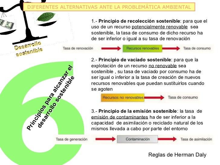 DIFERENTES ALTERNATIVAS ANTE LA PROBLEMÁTICA AMBIENTAL                                        1.- Principio de recolección...