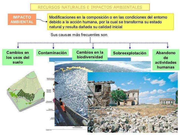 RECURSOS NATURALES E IMPACTOS AMBIENTALES   IMPACTO          Modificaciones en la composición o en las condiciones del ent...