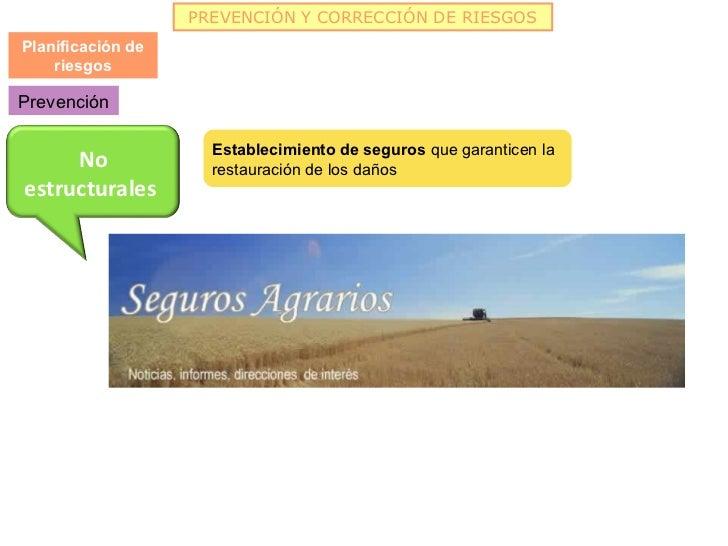 PREVENCIÓN Y CORRECCIÓN DE RIESGOSPlanificación de    riesgosPrevención                     Establecimiento de seguros que...