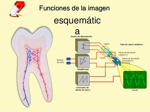 Funciones de la imagen esquemátic a