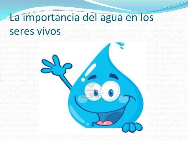 La importancia del agua en losseres vivos