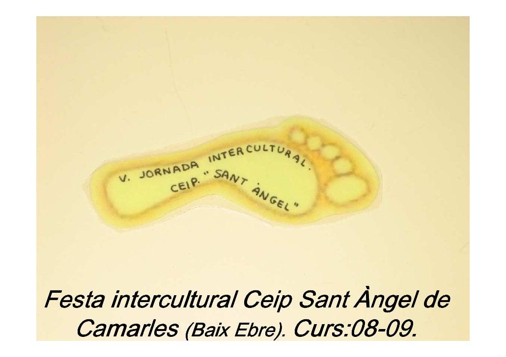 Festa intercultural Ceip Sant Àngel de   Camarles (Baix Ebre). Curs:08-09.                         Curs:08-