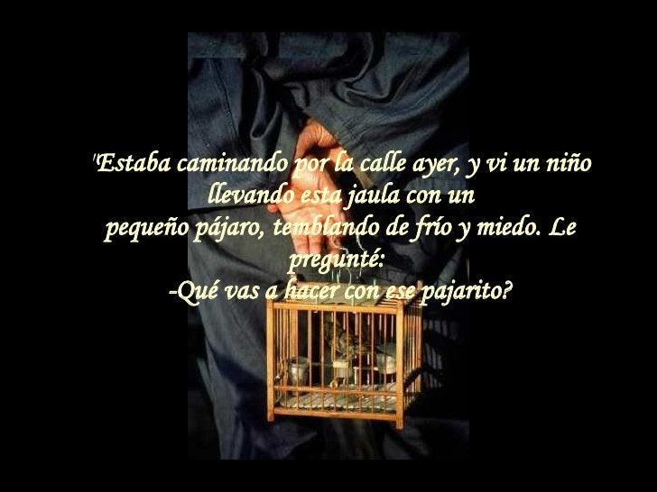 """"""" Estaba caminando por la calle ayer, y vi un niño llevando esta jaula con un pequeño pájaro, temblando de frío y mie..."""