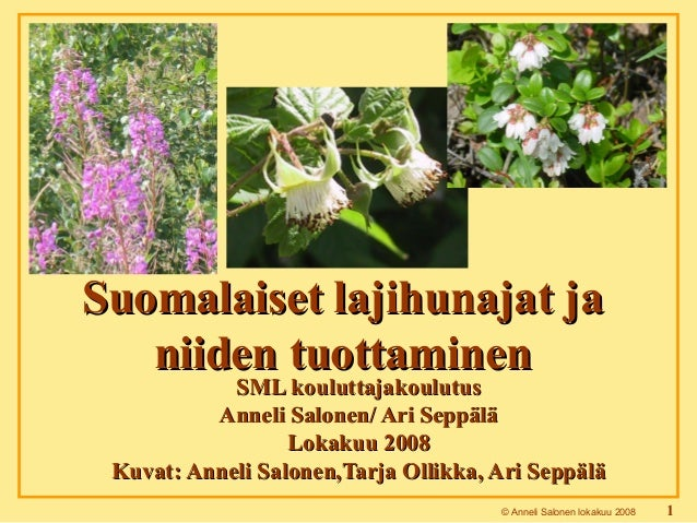 © Anneli Salonen lokakuu 2008 1 SML kouluttajakoulutusSML kouluttajakoulutus Anneli Salonen/ Ari SeppäläAnneli Salonen/ Ar...