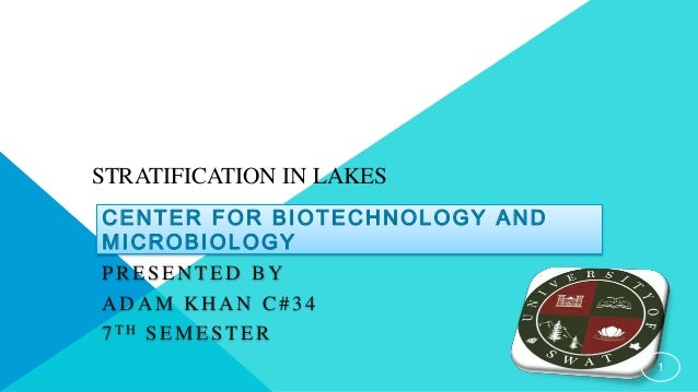 STRATIFICATION IN LAKES  CENTER FOR BIOTECHNOLOGY AND  MICROBIOLOGY  PRESENTED BY  ADAM KHAN C# 3 4  7 TH SEMESTER  1