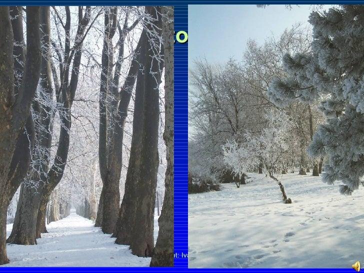 Lake Balaton in winter
