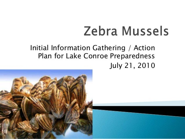 Initial Information Gathering / Action   Plan for Lake Conroe Preparedness                        July 21, 2010