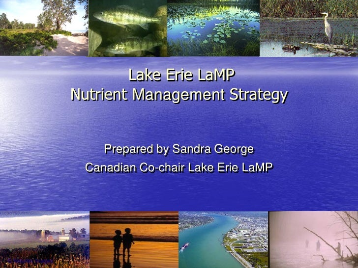 Lake Erie LaMP Nutrient Management Strategy       Prepared by Sandra George  Canadian Co-chair Lake Erie LaMP
