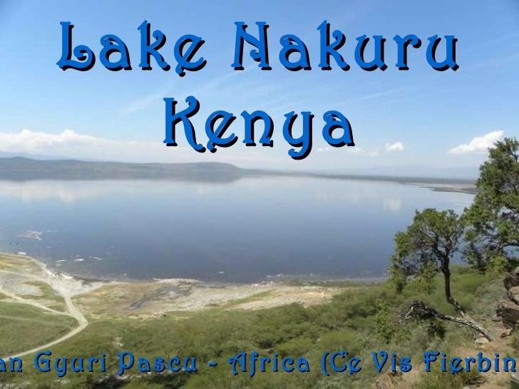 Lake Nakuru Kenya Ioan Gyuri Pascu - Africa (Ce Vis Fierbinte)