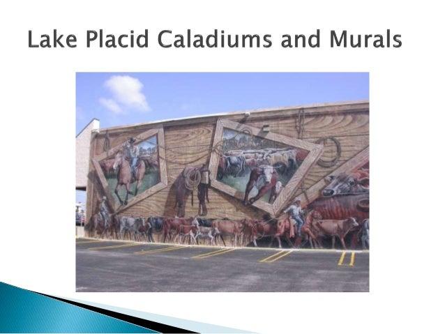 Lake Placid Caladiums And Murals