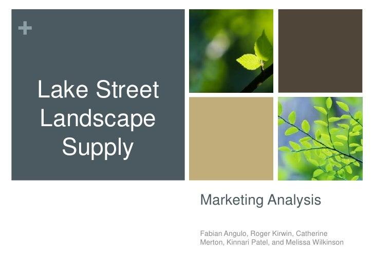 Marketing Analysis<br />Fabian Angulo, Roger Kirwin, Catherine Merton, Kinnari Patel, and Melissa Wilkinson<br />Lake Stre...