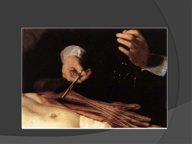 La lección de anatomía del doctor tulp