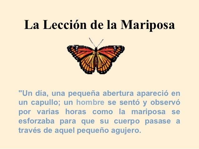 La lecci n de la mariposa for Lecciones de castorama de bricolaje