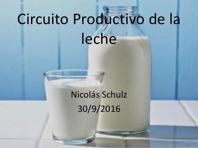 Circuito De La Leche : La leche