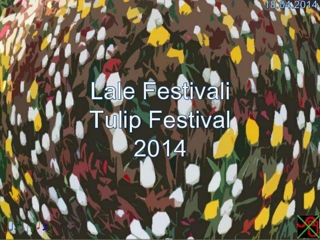 Lale Festivali,Tulip Festival 2014