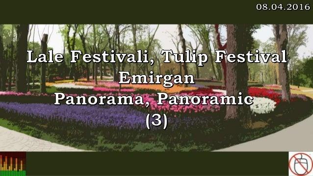 Lale Festivali, Tulip Festival, Emirgan, Panorama, Panoramic (3)