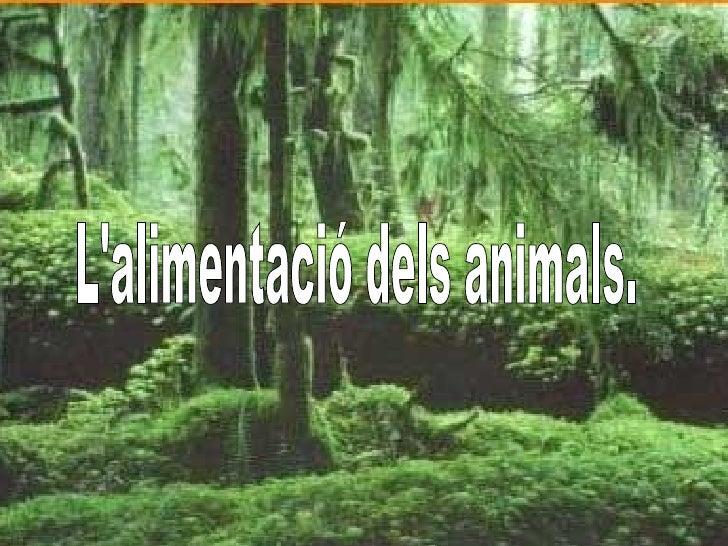 http://www.slideshare.net/GLJR/lalimentaci-dels-animals