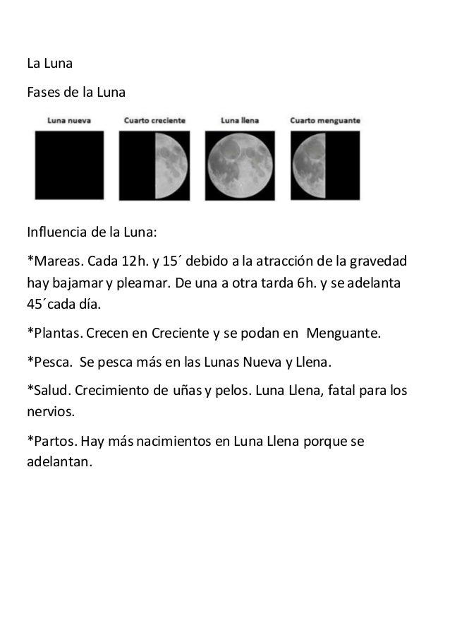 La Luna Fases de la Luna Influencia de la Luna: *Mareas. Cada 12h. y 15´ debido a la atracción de la gravedad hay bajamar ...