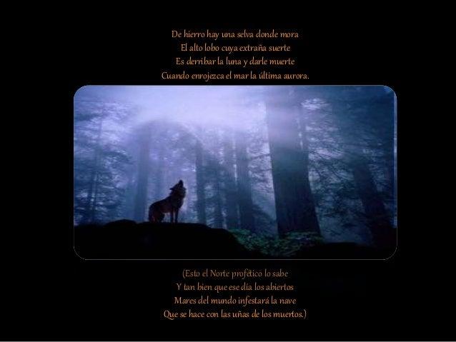 Cuando, en Ginebra o Z�rich, la fortuna Quiso que yo tambi�n fuera poeta, Me impuse. como todos, la secreta Obligaci�n de ...