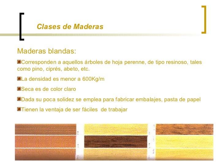 La madera for Arboles de hoja perenne para clima continental