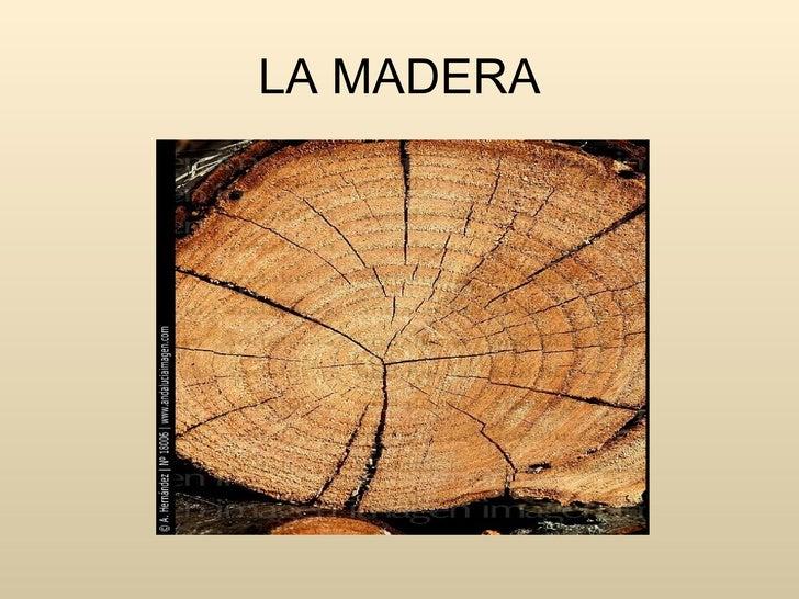 La madera for La beta de la madera