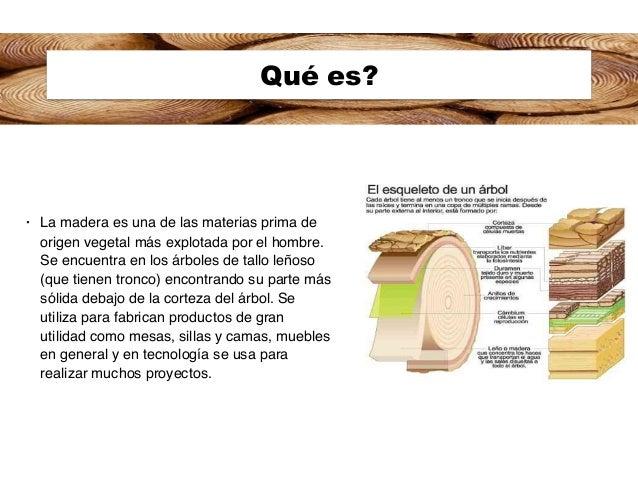 reporte madera