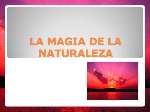 LA MAGIA DE LA NATURALEZA
