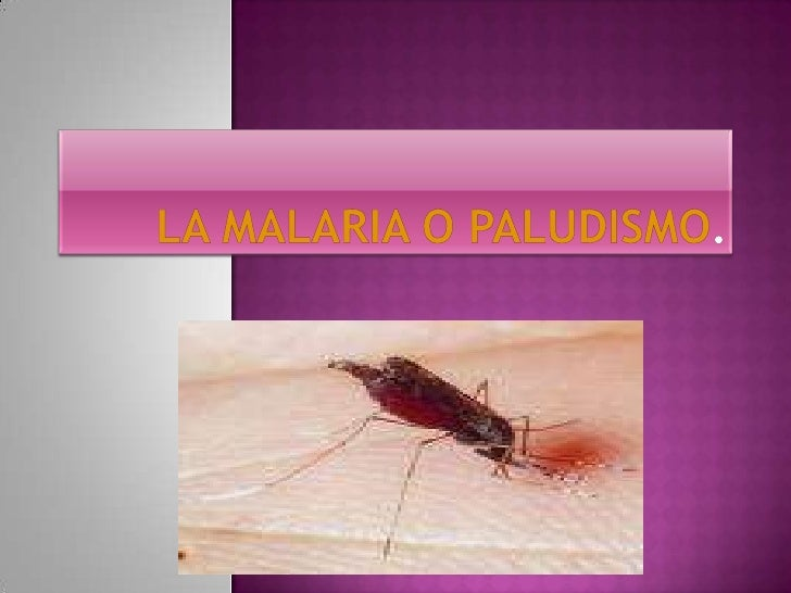La malaria o paludismo.<br />