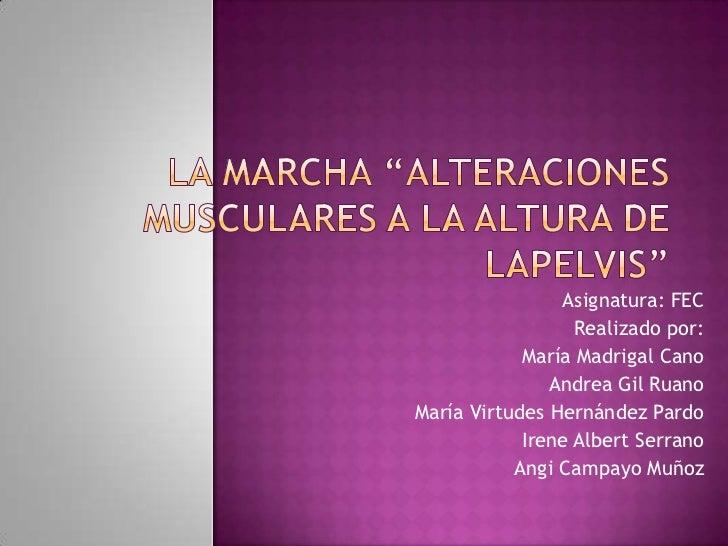 Asignatura: FEC                  Realizado por:            María Madrigal Cano               Andrea Gil RuanoMaría Virtude...