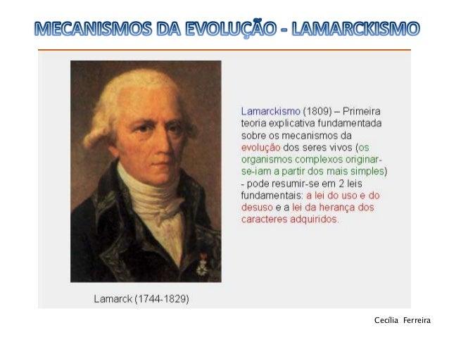 Lamarckismo 11ºbg Slide 2