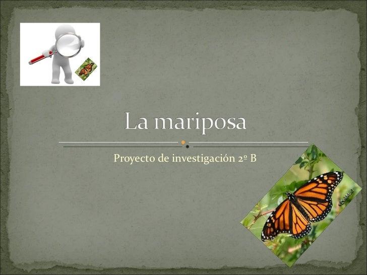 Proyecto de investigación 2º B