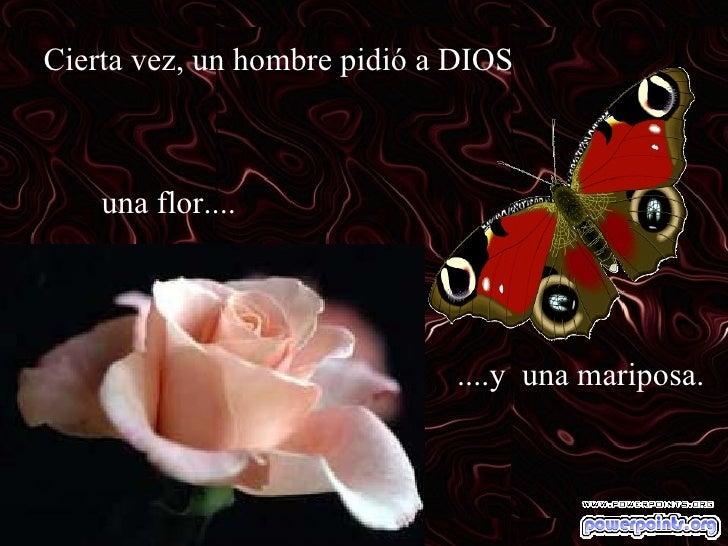 La Mariposa Y La Flor Slide 2