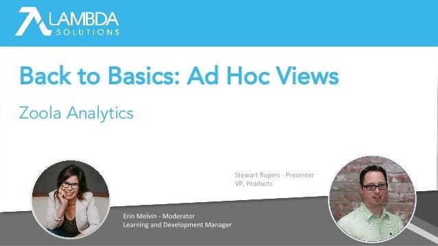 Back to Basics: Ad Hoc Views Zoola Analytics