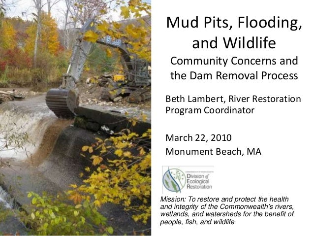 Mud Pits, Flooding, and Wildlife Community Concerns and the Dam Removal Process Beth Lambert, River Restoration Program Co...