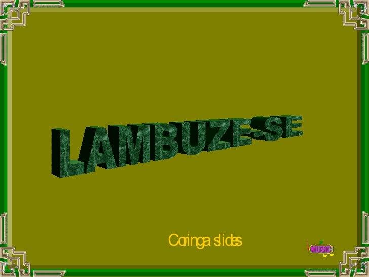LAMBUZE-SE Coringa  slides