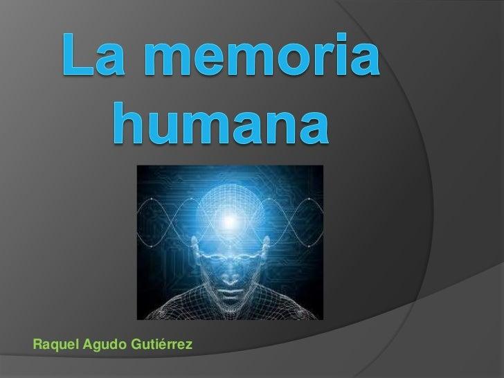 La memoria humana - Taringa!