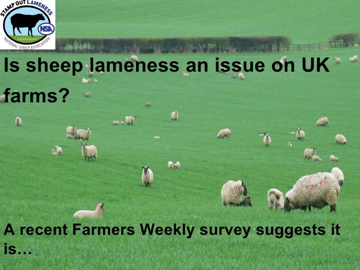 Is sheep lameness an issue on UKfarms?A recent Farmers Weekly survey suggests itis…
