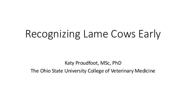 Recognizing Lame Cows Early Katy Proudfoot, MSc, PhD The Ohio State University College of Veterinary Medicine