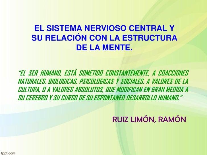 """EL SISTEMA NERVIOSO CENTRAL Y     SU RELACIÓN CON LA ESTRUCTURA              DE LA MENTE.""""EL SER HUMANO, ESTÁ SOMETIDO CON..."""
