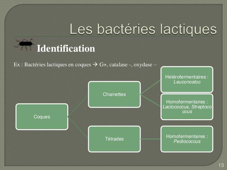 Microbiologie de lait - Comptes Rendus - Mots