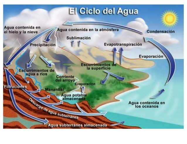 Lamina Ciclo Del Agua