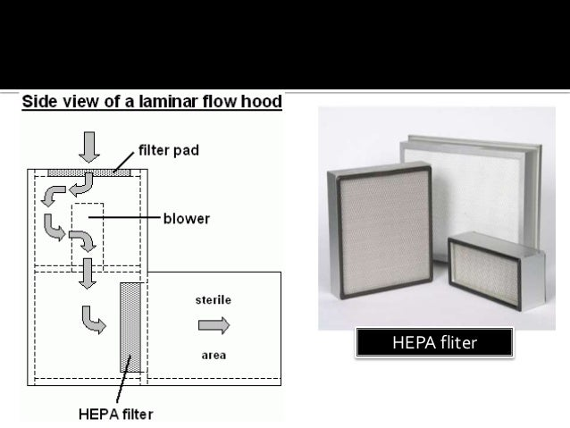diagram of air flow wiring diagram img Pathway of Air Flow Diagram