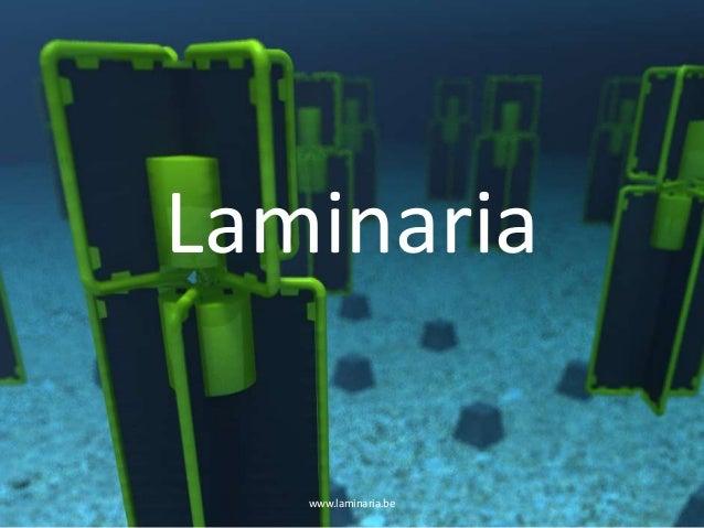 Laminariawww.laminaria.be 1