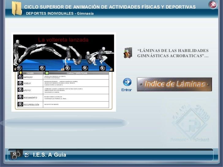"""CICLO SUPERIOR DE ANIMACIÓN DE ACTIVIDADES FÍSICAS Y DEPORTIVAS """" LÁMINAS DE LAS HABILIDADES GIMNÁSTICAS ACROBATICAS""""… DEP..."""